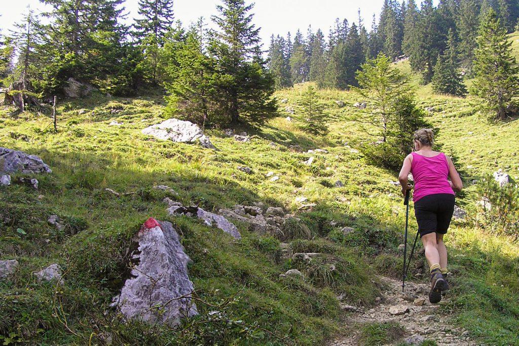 Wandern Breitenstein Fischbachau